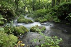 Kitanizawa halny strumień Fotografia Stock