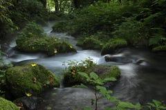 Kitanizawa halny strumień Zdjęcia Royalty Free