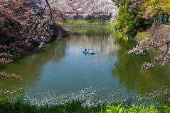 Kitanomaru nationaal park Royalty-vrije Stock Foto