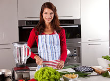 In the kitchen. Beautiful young brunette in the kitchen preparing dinner Royalty Free Stock Photo