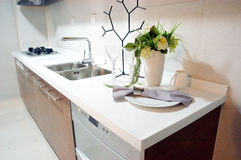 Kitchen. Modern kitchen , flowers and so on Royalty Free Stock Photo