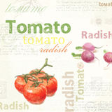 Kitchen art. Watercolor vintage tomato Royalty Free Stock Photos