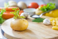Kitchen board with fresh ripe yellow turnip. Royalty Free Stock Images