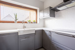 Kitchen with canopy. Light kitchen with flowers and steely canopy stock images