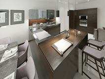 Kitchen contemporary style Royalty Free Stock Images
