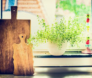 Kitchen cooking herbs in flowers pot on window still with cuting board Royalty Free Stock Photos