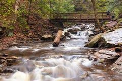 Kitchen Creek Ricketts Glen Park Pennsylvania stock photography