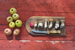 Kitchen cutting board with mushrooms and apples on table. Kitchen cutting board with mushrooms and apples on red wooden table Stock Photography