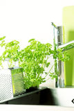 At kitchen: faucet, grater Royalty Free Stock Photography