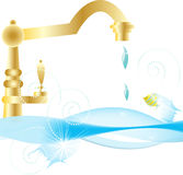 From the kitchen faucet pure water drips Stock Image