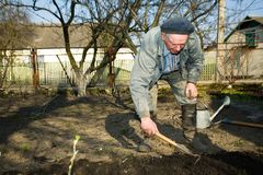 In kitchen garden. An  old peasant cultivating the soil in his kitchen garden in the countruside Royalty Free Stock Photography