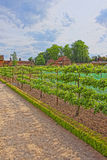 Kitchen garden in Audley End House in Essex in England Stock Photography