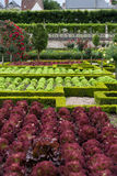 Kitchen garden in  Chateau de Villandry Royalty Free Stock Photos