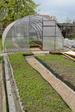 Kitchen garden and the greenhouse from cellular polycarbonate Royalty Free Stock Images