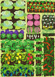 Kitchen garden Stock Images