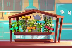 Kitchen garden spices or herbs vector illustration stock illustration