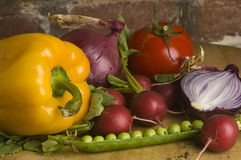 Kitchen garden vegetable Stock Photography