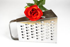 Kitchen grater with red rose on a white background. Tools, flower Stock Photos