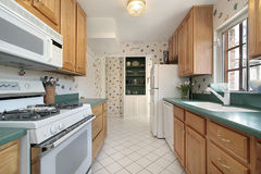 Kitchen with green counters Royalty Free Stock Image