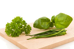 Kitchen herbs Stock Photography