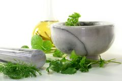 Kitchen herbs Stock Images