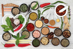 Kitchen Herbs and Spices Royalty Free Stock Photos