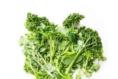 Kitchen Herbs Stock Photography