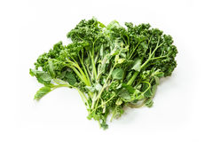 Kitchen Herbs Royalty Free Stock Photos
