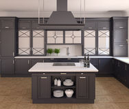 Kitchen interior. Royalty Free Stock Photos