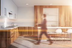 Kitchen interior with cupboard and bar, man stock illustration