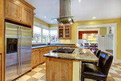 KItchen interior. Stock Image
