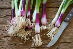Kitchen knife and spring onions. Bunch of red spring onions with a kitchen knife on old rustic wooden cutting board Stock Photo