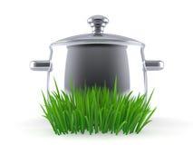 Kitchen pot on grass. Isolated on white background. 3d illustration royalty free illustration