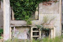 Kitchen Ruines with some plants royalty free stock photography