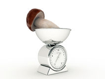 Kitchen scale with giant mushroom Stock Photo