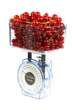 Kitchen scales and currants. Stock Images