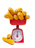 Kitchen scales and ears of corn isolated on white background Royalty Free Stock Photography