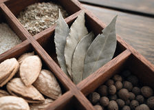 Kitchen set of spices Stock Photography