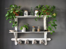 Kitchen shelf shabby chic Royalty Free Stock Images