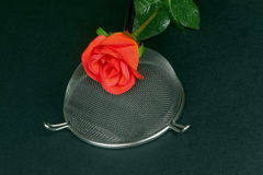 Kitchen sieve with red roses on a black background Royalty Free Stock Images