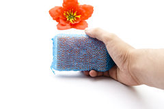 Kitchen Sponge in Hand Stock Photography