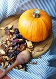 Kitchen still life pumpkin with dried fruits Stock Photos