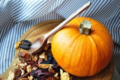 Kitchen still life pumpkin with dried fruits Stock Images
