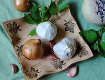 Kitchen still life - vegetable and herbs for health - garlic, onion, celery and lemon balm Royalty Free Stock Photos