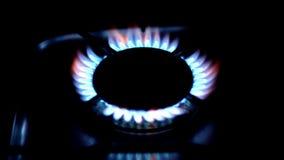 Kitchen stove stock video