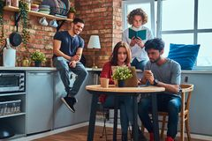 Kitchen in student dormitory. Group of interracial students engaged in education. stock photos