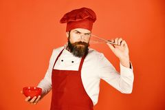Kitchen tools concept. Cook with serious face in burgundy hat. And apron holds bowl and whisk. Chef with red plate and whipping utensil. Man or hipster with royalty free stock photos