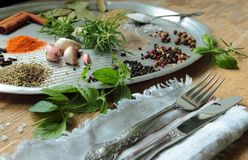 Kitchen tray with herbs and spices Royalty Free Stock Image