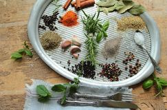 Kitchen tray with herbs and spices Stock Images