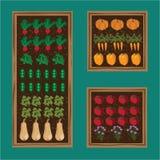 Kitchen vegetable garden planner Stock Image